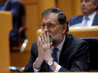 Mariano Rajoy, presidente del Gobierno, minutos antes de comenzar el debate en el Senado.