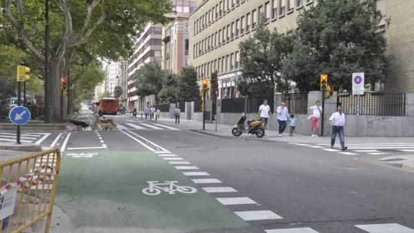 El primer tramo del carril bici del paseo Sagasta ya está abierto.