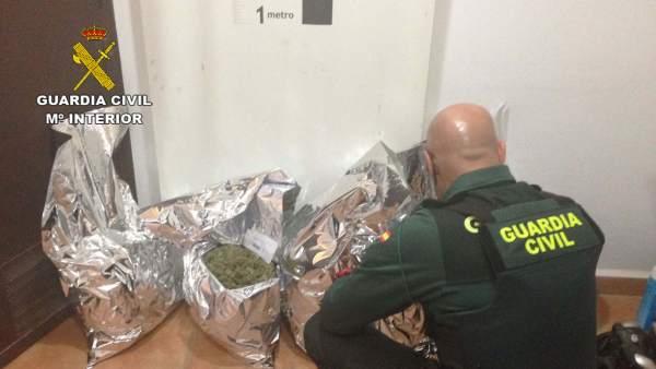 La Guardia Civil se incauta de marihuana