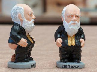 Darwin, otro espécimen 'caganer'