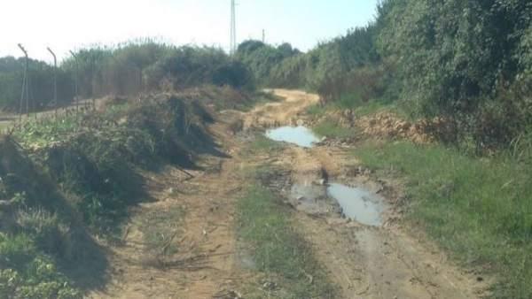 Camino rural de Cartaya.