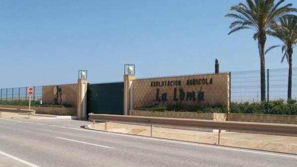 Finca La Loma en Murcia