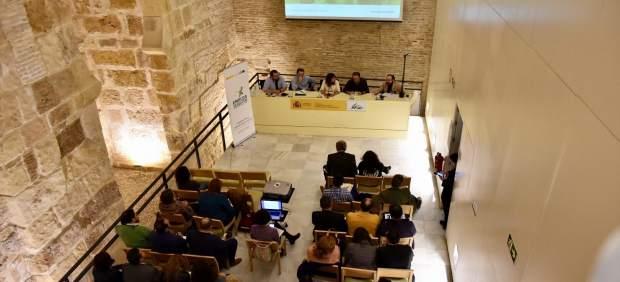 Greenweekend emprendeverde' de Fundación Biodiversidad en Sevilla