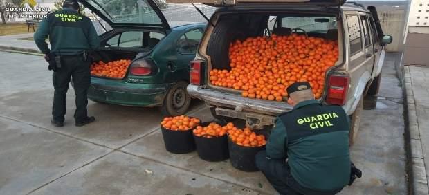 Remitiendo Np Opc Huelva 'La Guardia Civil Interviene 600 Kg. De Naranjas Y 200