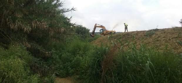 Trabajos en los cauces colapsados de Lucena del Puerto (Huelva).