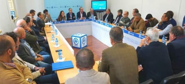 Mesa del Agua PP Málaga Bendodo técnicos suministro