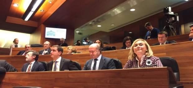 Mercedes Fernández, con su grupo parlamentario