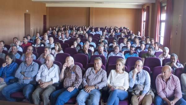 Asamblea de regantes del Condado de Huelva.