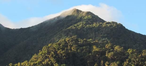 Cinco motivos muy naturales para visitar Panamá