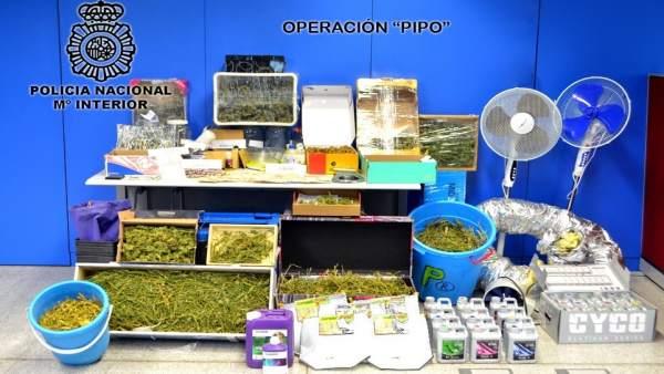 Droga incautada en la operación Pipo