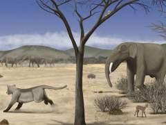 Así era Madrid hace 14 millones de años