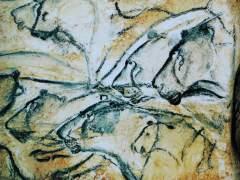 """Encuentran un cachorro de león cavernario de más de 20.000 años """"perfectamente conservado"""""""