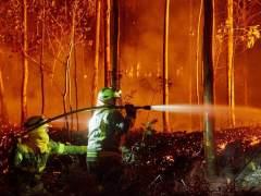 El calor y el viento del sur avivan una veintena de incendios en Asturias, Galicia y Cantabria