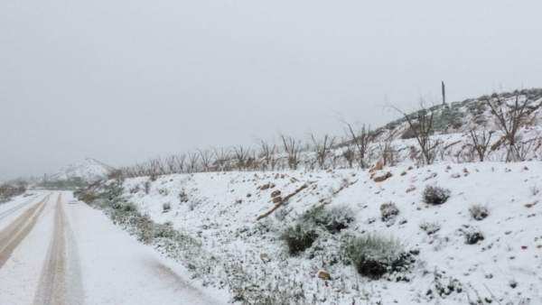 Nieve, nevada, frío