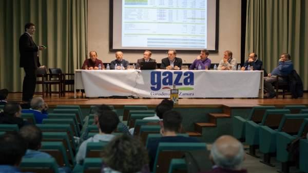 Asamblea de Gaza.