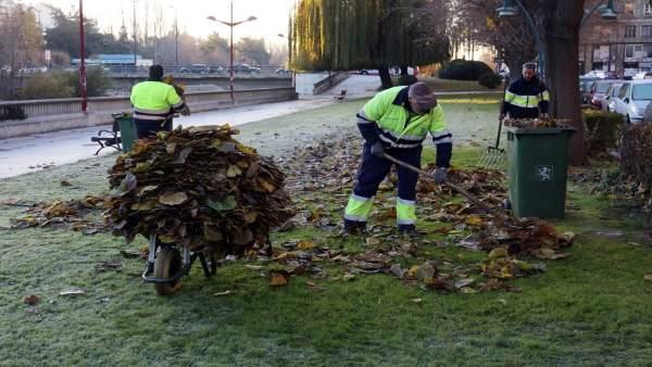 León.- Retirada de hojas en las calles de León