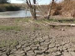 Los planes para paliar la sequía se revisarán en los próximos tres meses