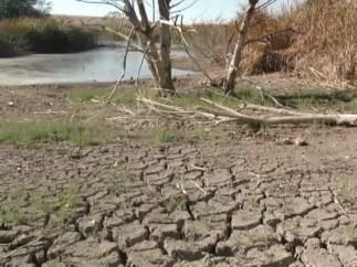 La solución a la sequía pasa por un nuevo Plan Hidrológico