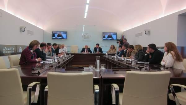 Comisión de Investigación concurso de transporte sanitario