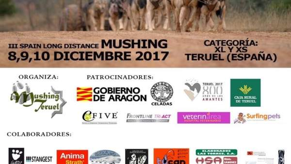 Teruel celebra este fin de semana la III Spain Long Distance Mushing