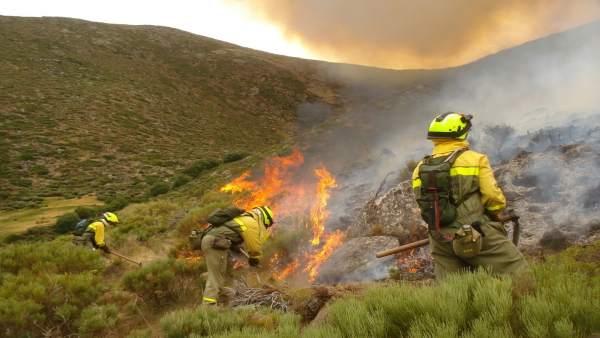 Brigada de Extinción de incendios BRIF del Magrama