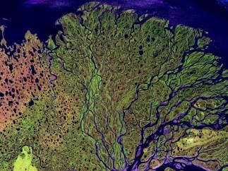El río Lena