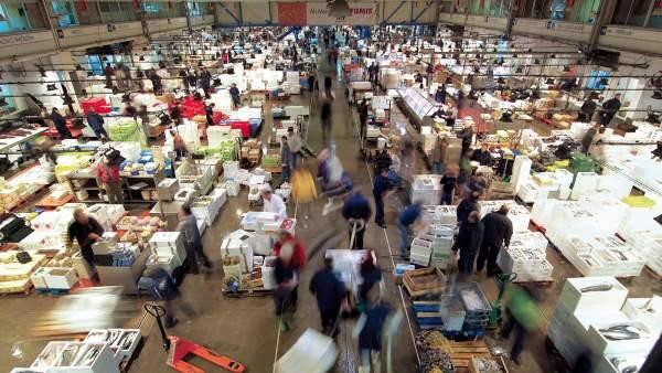 Parte del mercado del pescado de Mercabarna.