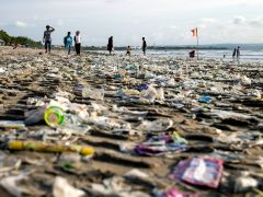 Hallan microplásticos en excrementos humanos