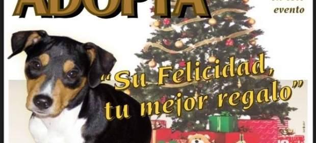 Cartel del I Encuentro de Adopción Solidaria de Mascotas
