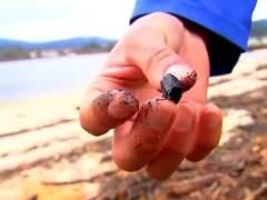 Los mariscadores gallegos alertan sobre la gran cantidad de cenizas en los ríos
