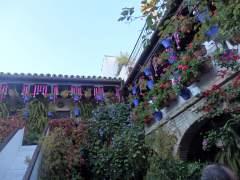 Córdoba y su aceitunada Subbética