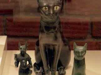 Se afeitaban las cejas en honor a los gatos