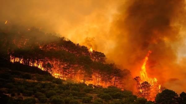 Incendio forestal en Collado Mediano (Madrid) el 1 de julio de 2009