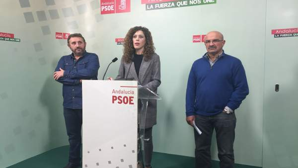 Psoe De Andalucía: Audios Y Foto Miriam Alconchel 02 01 2018