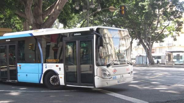 Autobús En Málaga