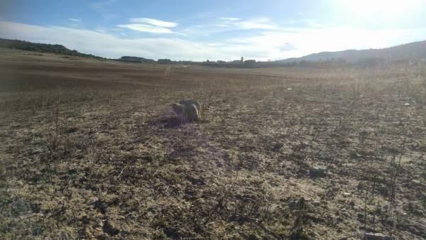 Municipios ribereños, sequía