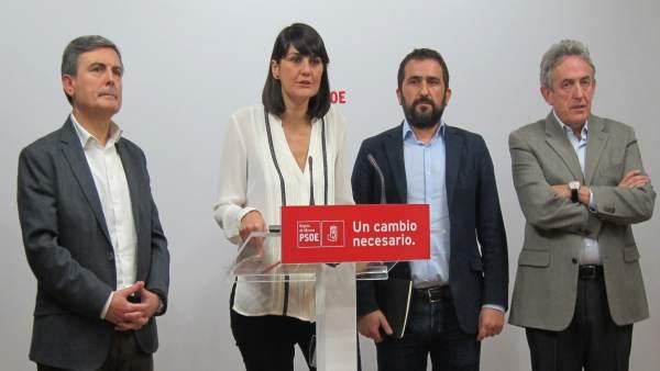 DIPUTADOS CONGRESO Y SENADO PSOE: SAURA, G. VERACRUZ, SOTO, OÑATE