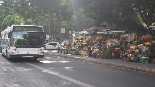 Bus, flores, alameda princial, autobús, emt