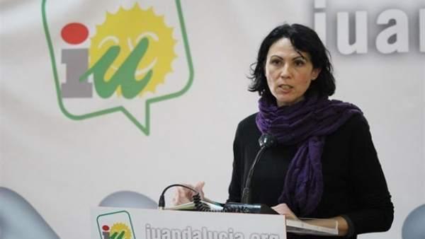 La diputada de IU en el Congreso Eva García Sempere