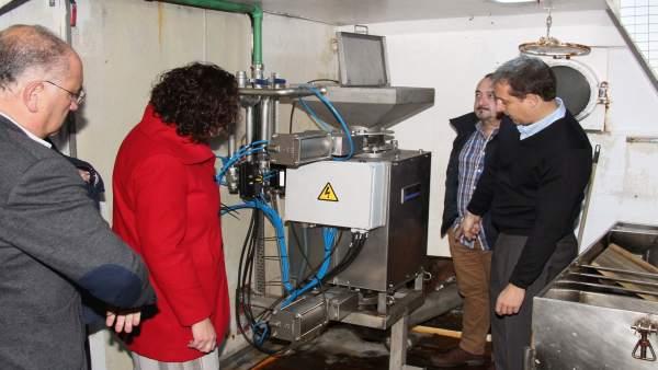 Equipo gallego para reducir parásitos al tratar vísceras de pescado