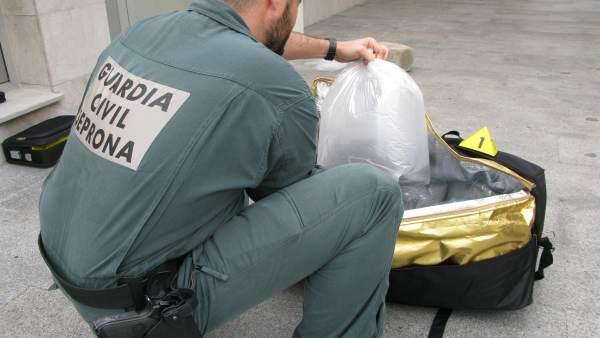 Anguilas intervenidas por la Guardia Civil en el puerto de Tarifa (Cádiz)