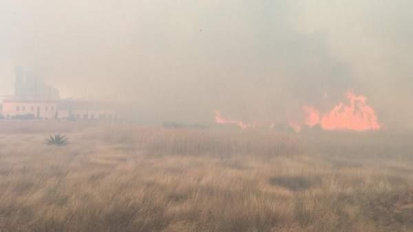 Incendio en el marjal dels Moros de Sagunt