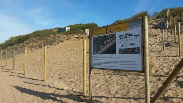Paisaje dunar de Mochicle en El Puerto