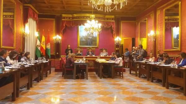 Pleno extraordinario para reprobar al alcalde Francisco Cuenca