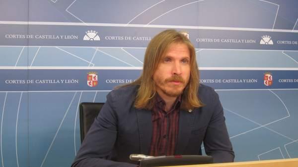 Fernández comparece ante los medios en las Cortes