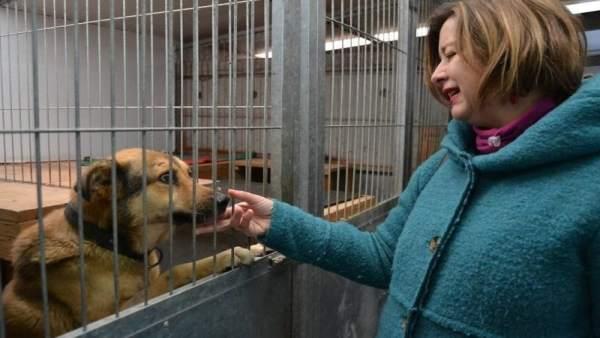 Ana Taboada, junto a un perro en el albergue