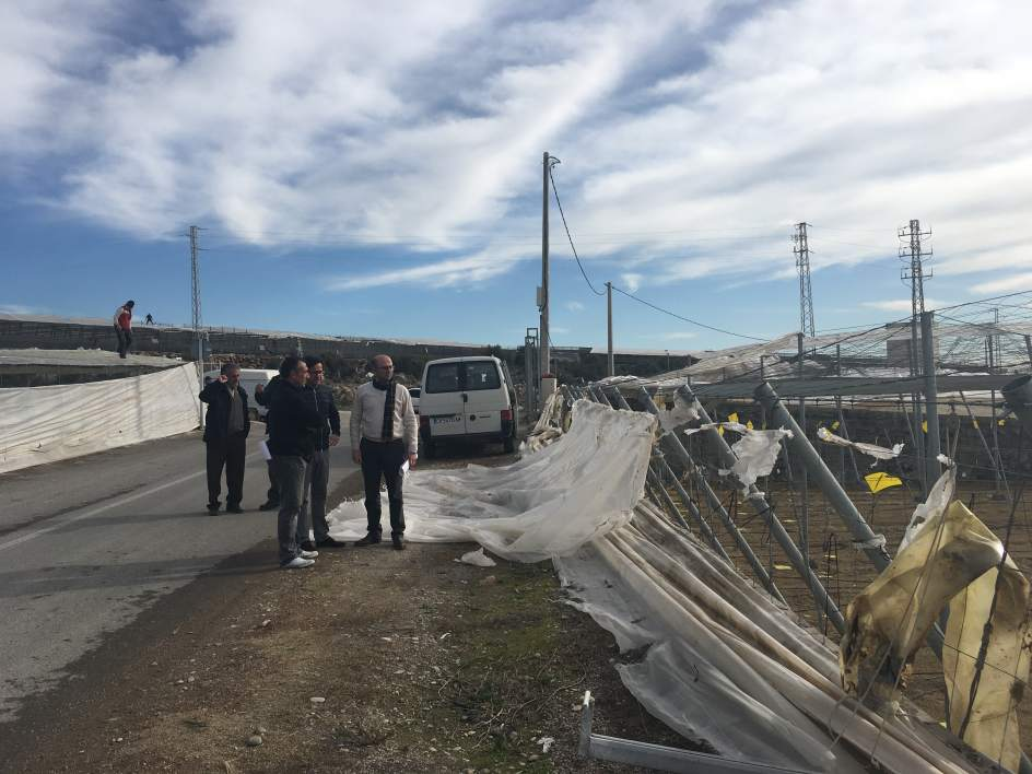 Caixabank establece un plan de ayudas para los afectados for Pisos caixabank