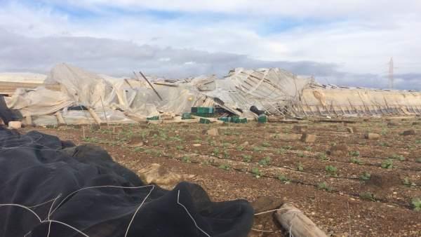 Daños causados por el temporal de viento en La Mojonera