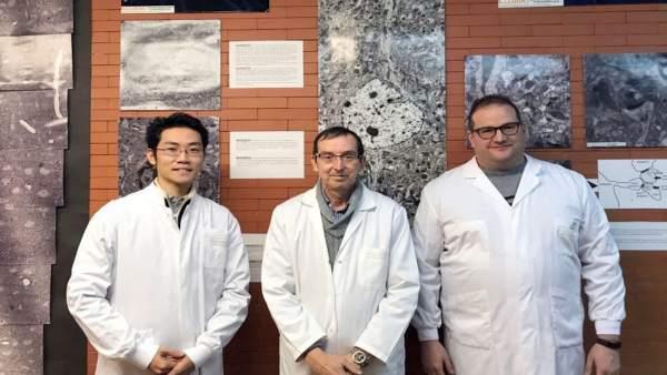 Los científicos García-Verdugo, Vicente Herranz-Pérez y Masato Sawada