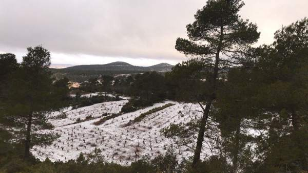 Nieve en Estenas